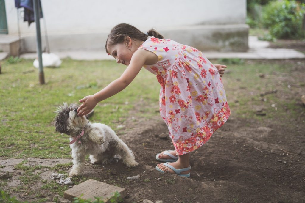 The Top 5 Ways to Know if Your Child Should Get a Puppy